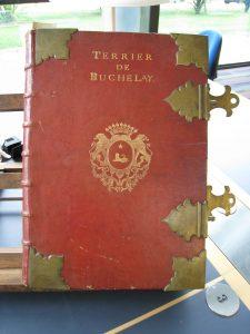 terrier de Buchelay